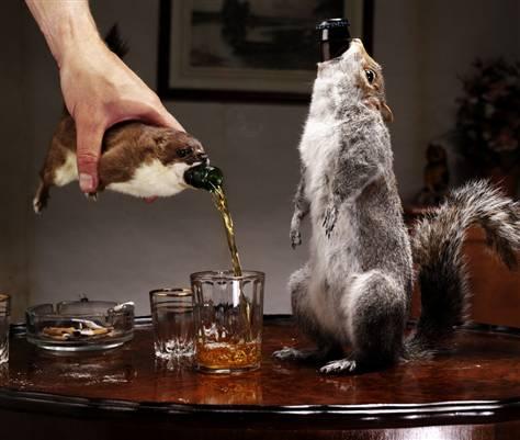 Dead-animal-beer